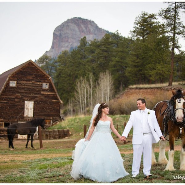Megan & Jason | Lower Lake Ranch Wedding Photography | Colorado Mountain Wedding Photography