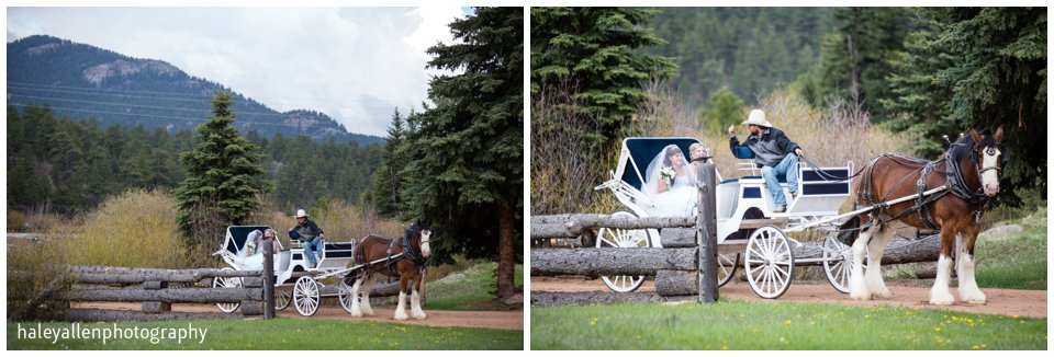 Lower Lake Ranch Wedding Photography