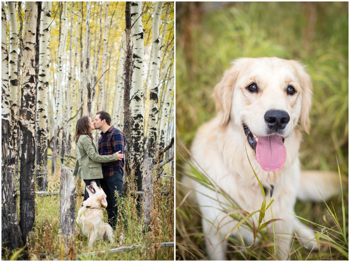 fall-aspen-tree-engagement-shoot-colorado-mountain-408B8384_BLOG