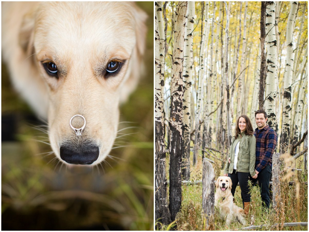 fall-aspen-tree-engagement-shoot-colorado-mountain-408B8399-Edit_BLOG