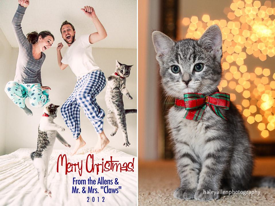 merry christmas y'all  denver colorado christmas card